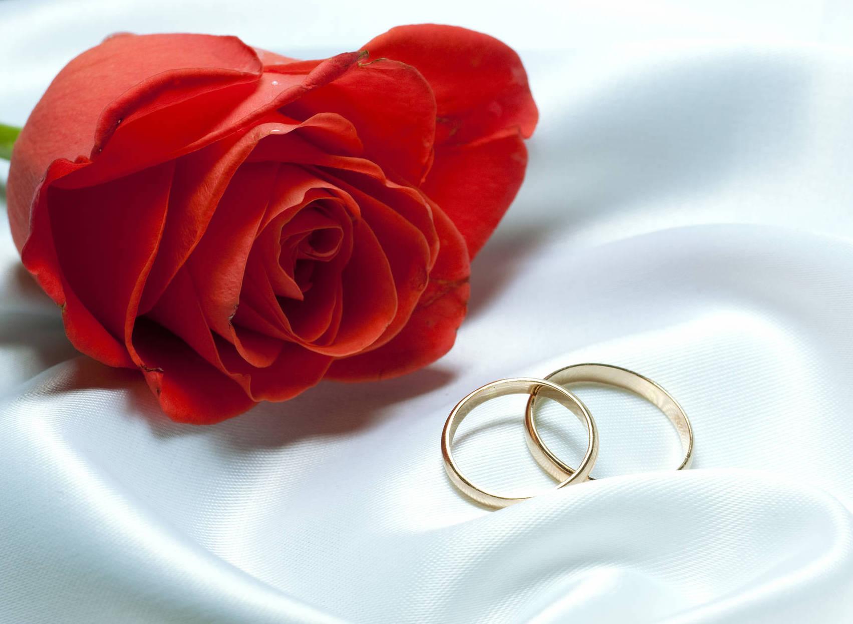 Die zwei Ringe als Zeichen der ewigen Träue. Feier mit XDREAM deinen schönsten Tag - die Hochzeit